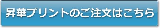 syoka-tyumongamen-button.jpg